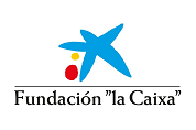 Logo Caixa web
